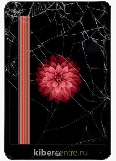 Разбитый iPad Mini 2 | KiberCentre