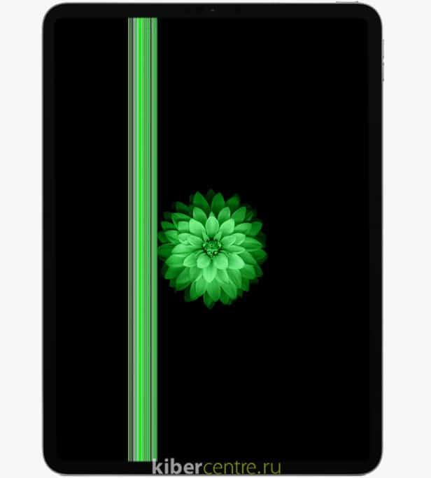 Зеленые полосы на экране iPad Pro